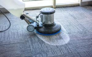 Professionelle Reinigung eines Teppichbodens.